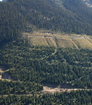Quarry with recent cut blocks upslope – new exploration target!