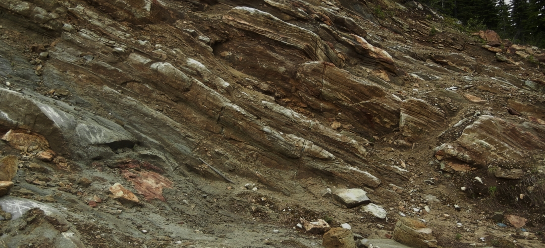 Graphitized host rocks